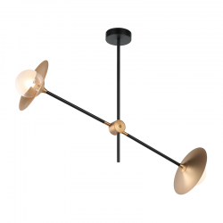 Ceiling Light Metallic Brass With Glass 2 ΧG9 Movable - ACA Decor