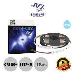 Led Strip JAZZ 12V 14,4 Watt IP65 SAMSUNG Chip 5m - CUBALUX