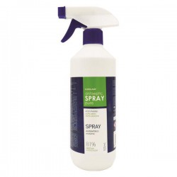 RINSE FREE HANDS SANITIZER SPRAY 500ML WITH HYDROGEN PEROXIDE
