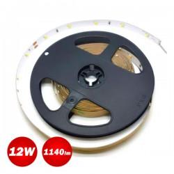 Led Strip 12W 24V IP20 TORA 5m