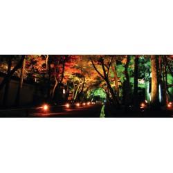 GU10 Garden Luminaire IP54 230V ACA