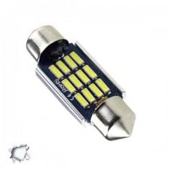 Σωληνωτός LED 36mm Can Bus με 12 SMD 4014 12-24 Volt Ψυχρό Λευκό 6000k GLOBO STAR