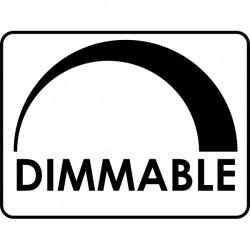 Λάμπα Led 5.5W Mini Globe E27 Dimmable Diolamp
