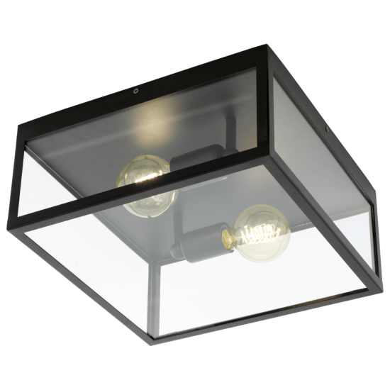 Vintage Metallic Ceiling Light In Black Color With Glass 2xE27 60W CHARTERHOUSE Eglo