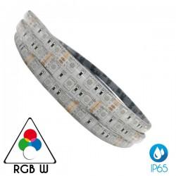 5 Μέτρα Led Ταινία 14.4W SMD 24V Αδιάβροχη IP65 Σε Διάφορα Χρώματα RGBW ACA